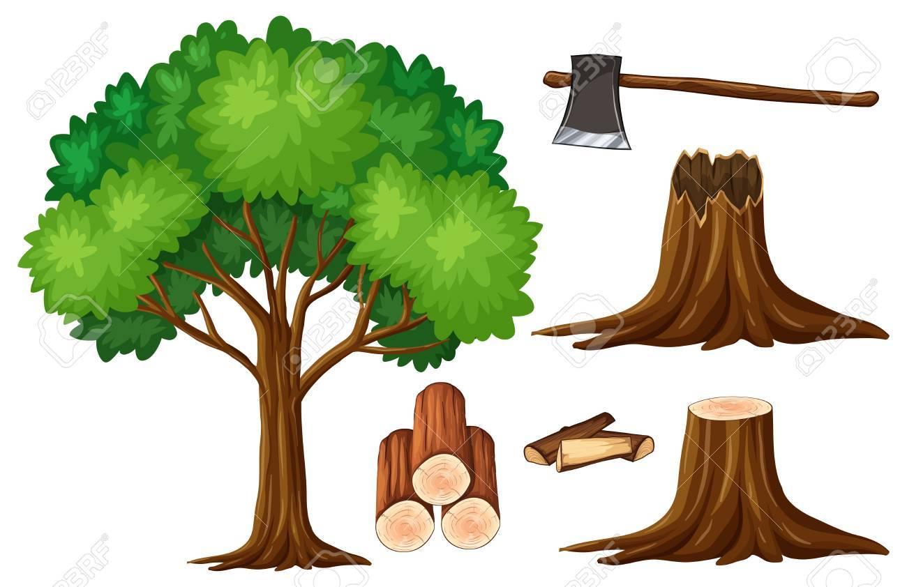 木と切り株の木イラストのイラスト素材ベクタ Image 75373723