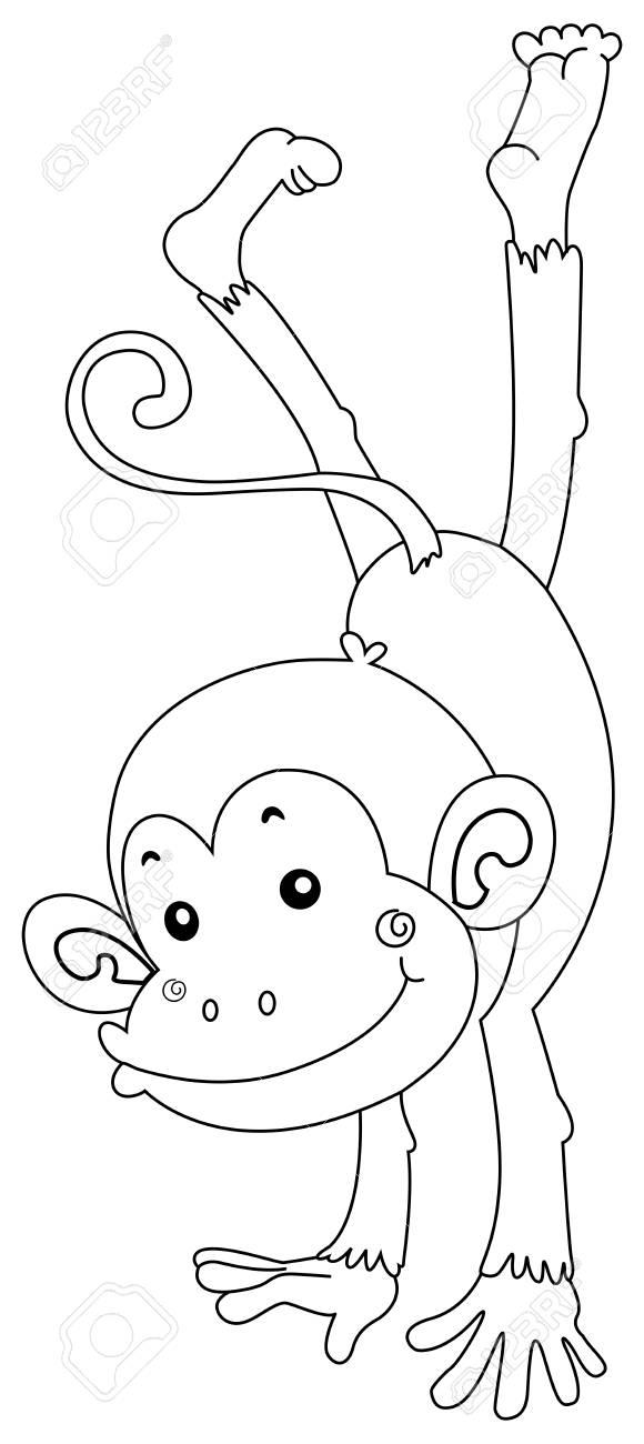 Animal Contorno De Ilustración De Mono Feliz Ilustraciones ...