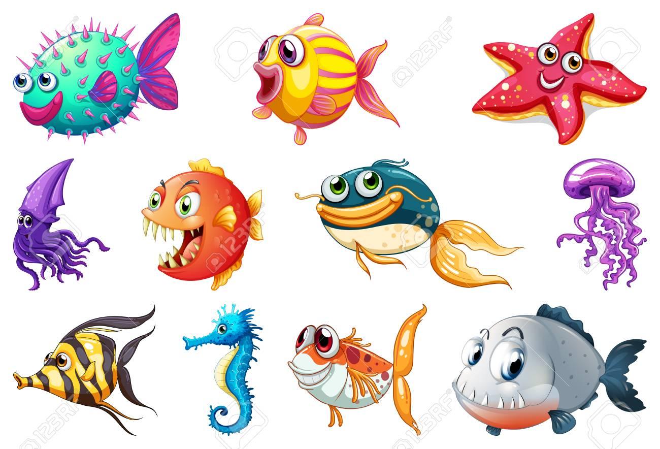 Set of sea creature illustration - 121753006