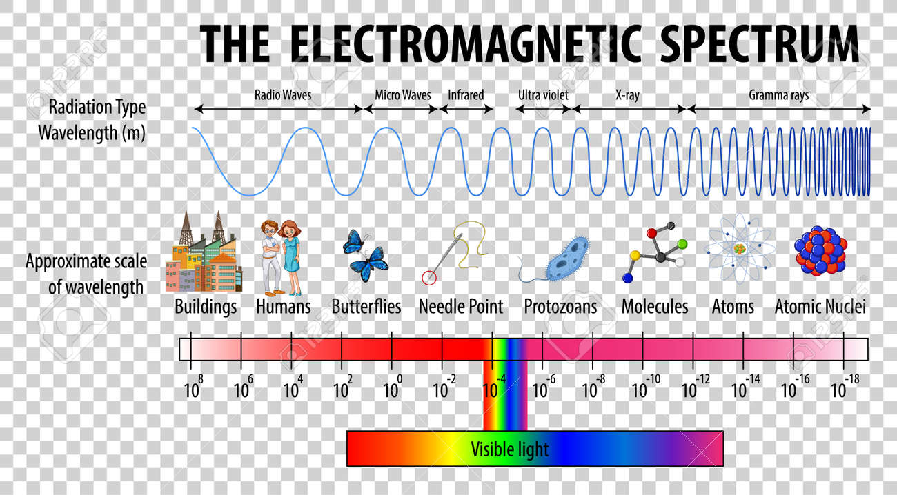 Science Electromagnetic Spectrum diagram on transparent background illustration - 166488473