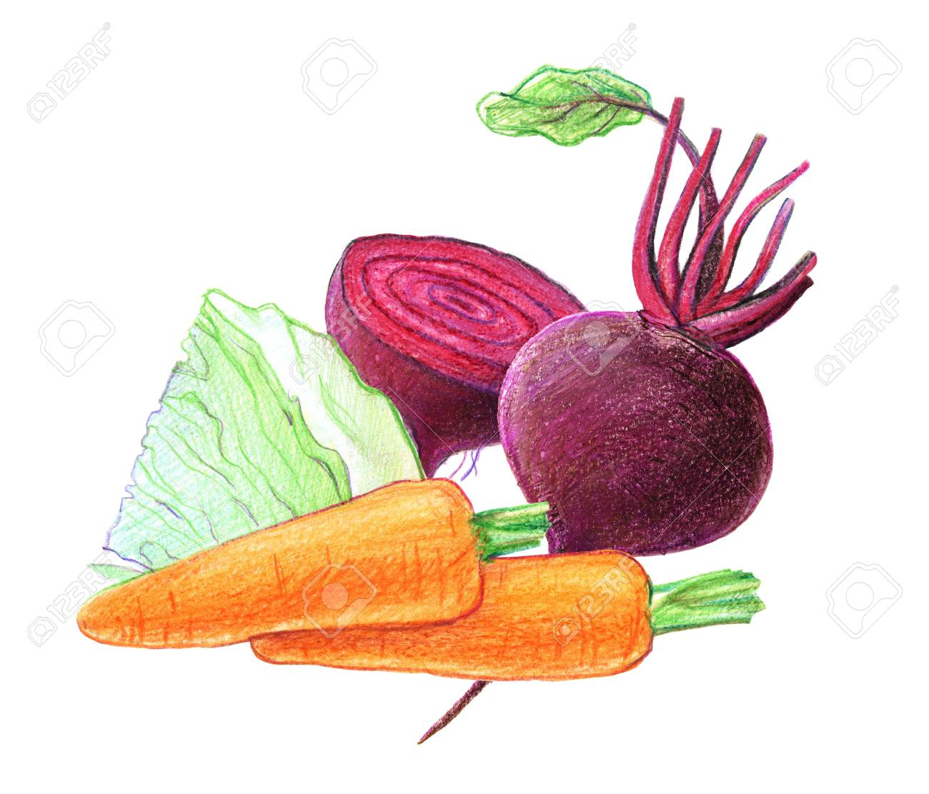 Vegetables And Root Vegetables Beets Cabbage Carrots Whole