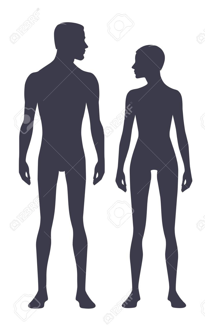 Male and female body silhouette with head in profile. Isolated perfect image symbols man and woman on a white background. Illustration - 133354402