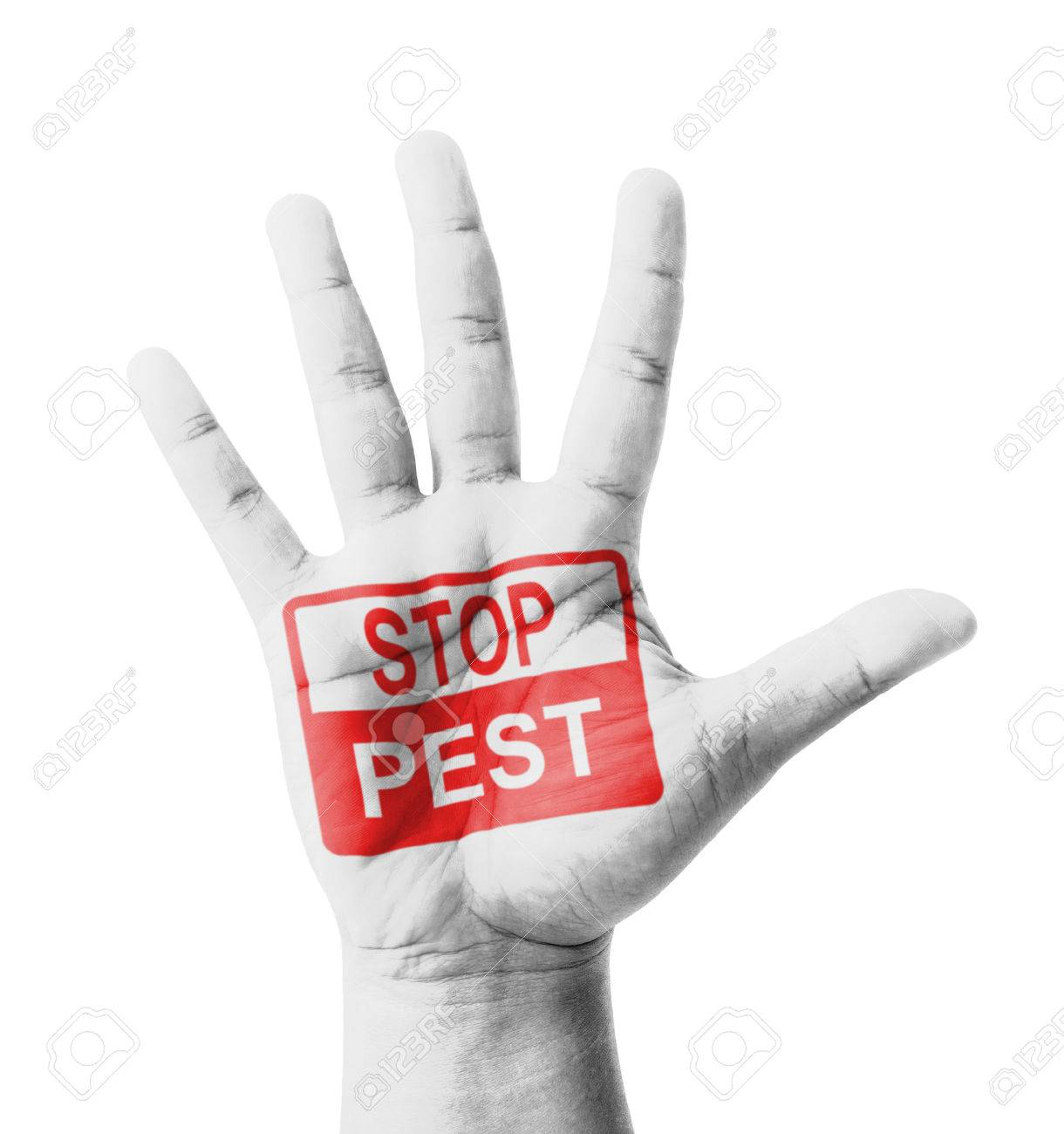 Open hand raised, Stop Pest sign painted, multi purpose concept - isolated on white background Stock Photo - 28292786
