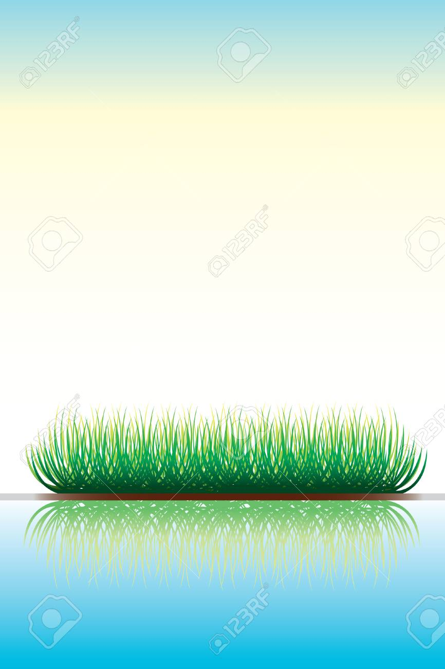 Green grass with reflection in water Stock Vector - 5798744