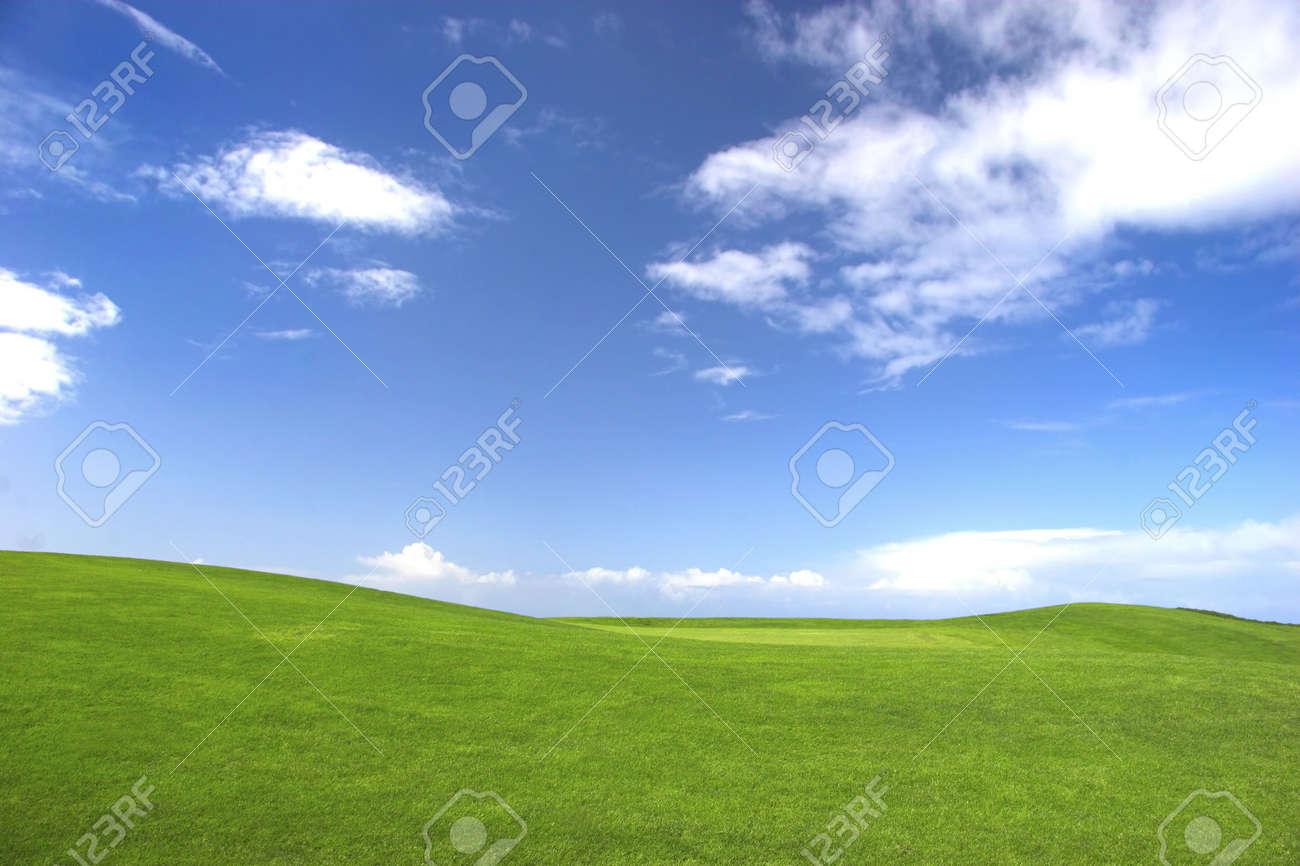 Green field Stock Photo - 404687