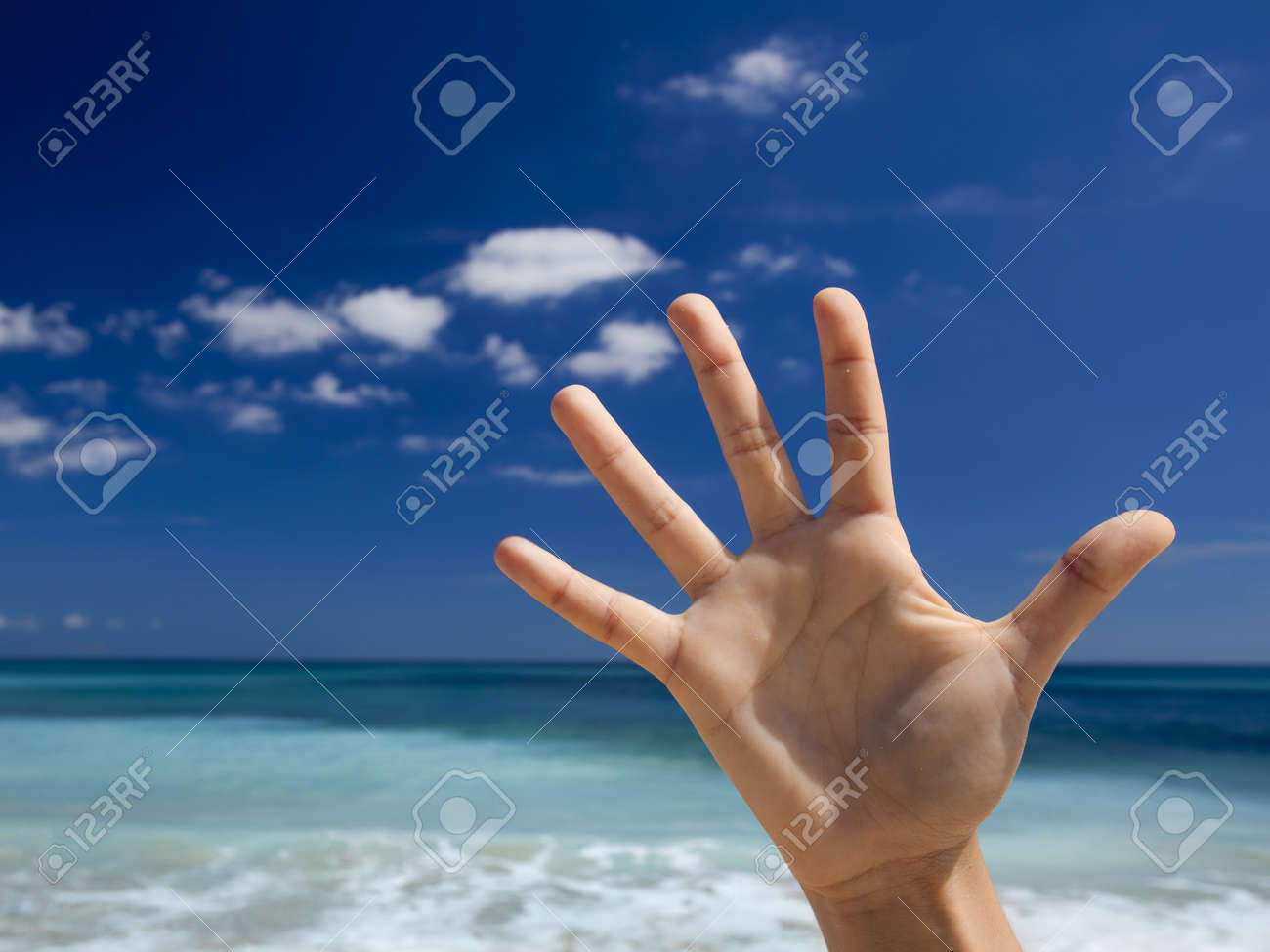 Female hands aganist a beautiful blue sky Stock Photo - 19844923