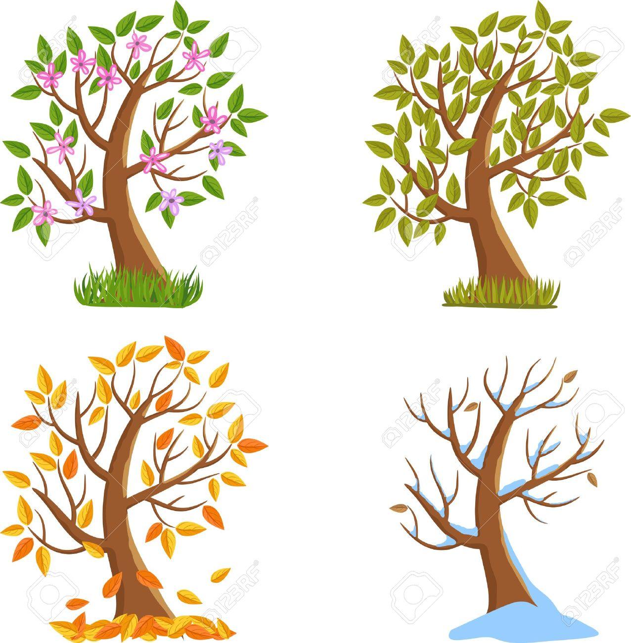 Spring, Summer, Autumn and Winter Tree Illustration. - 16038061