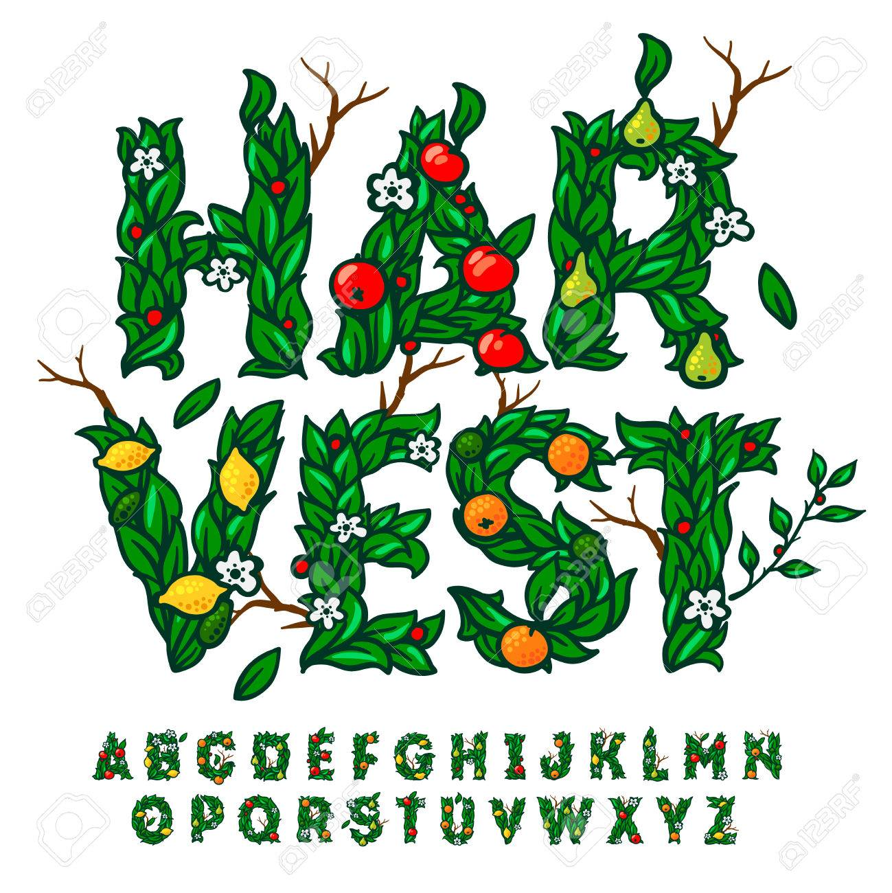 Alphabet made with leaves and fruits, use for fall harvest festival design, vector illustration. Standard-Bild - 47657789