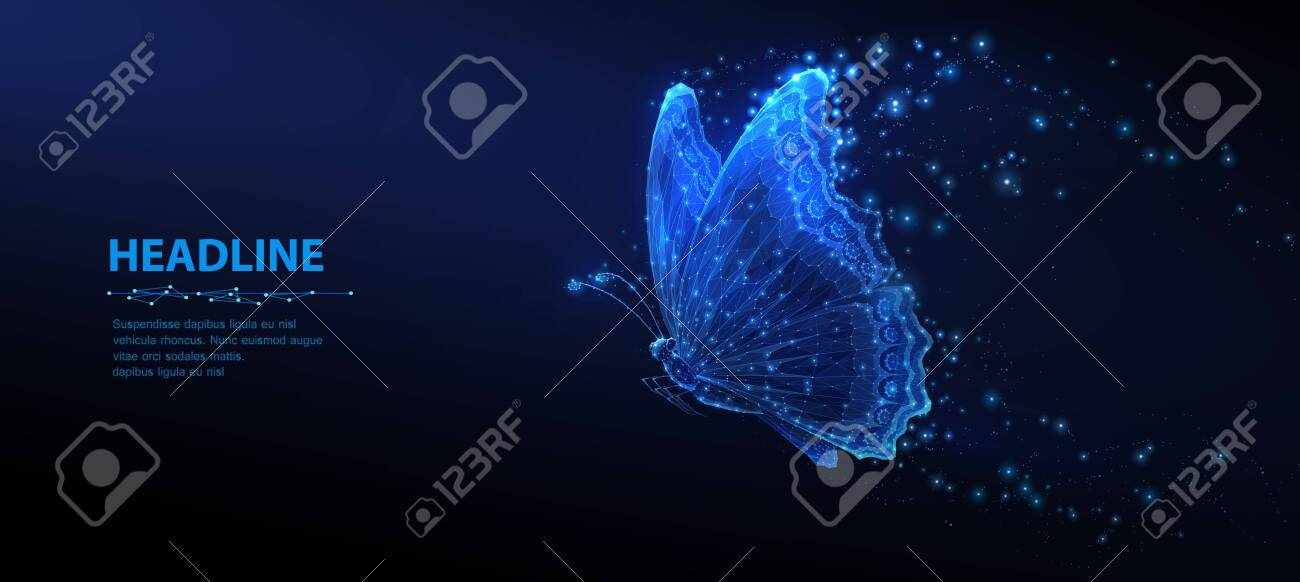 Butterfly. Abstract closeup butterfly insect isolated on blue background. Free dream, wildlife nature, creative fantasy fredom, idea inspiration concept - 149834971