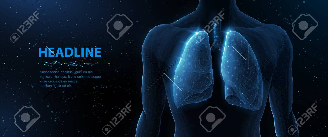 Lung and human body. Abstract vector 3d lungs on body background. Human health, respiratory system, pneumonia illness, biology science, smoker asthma, healthcare concept. - 150867842