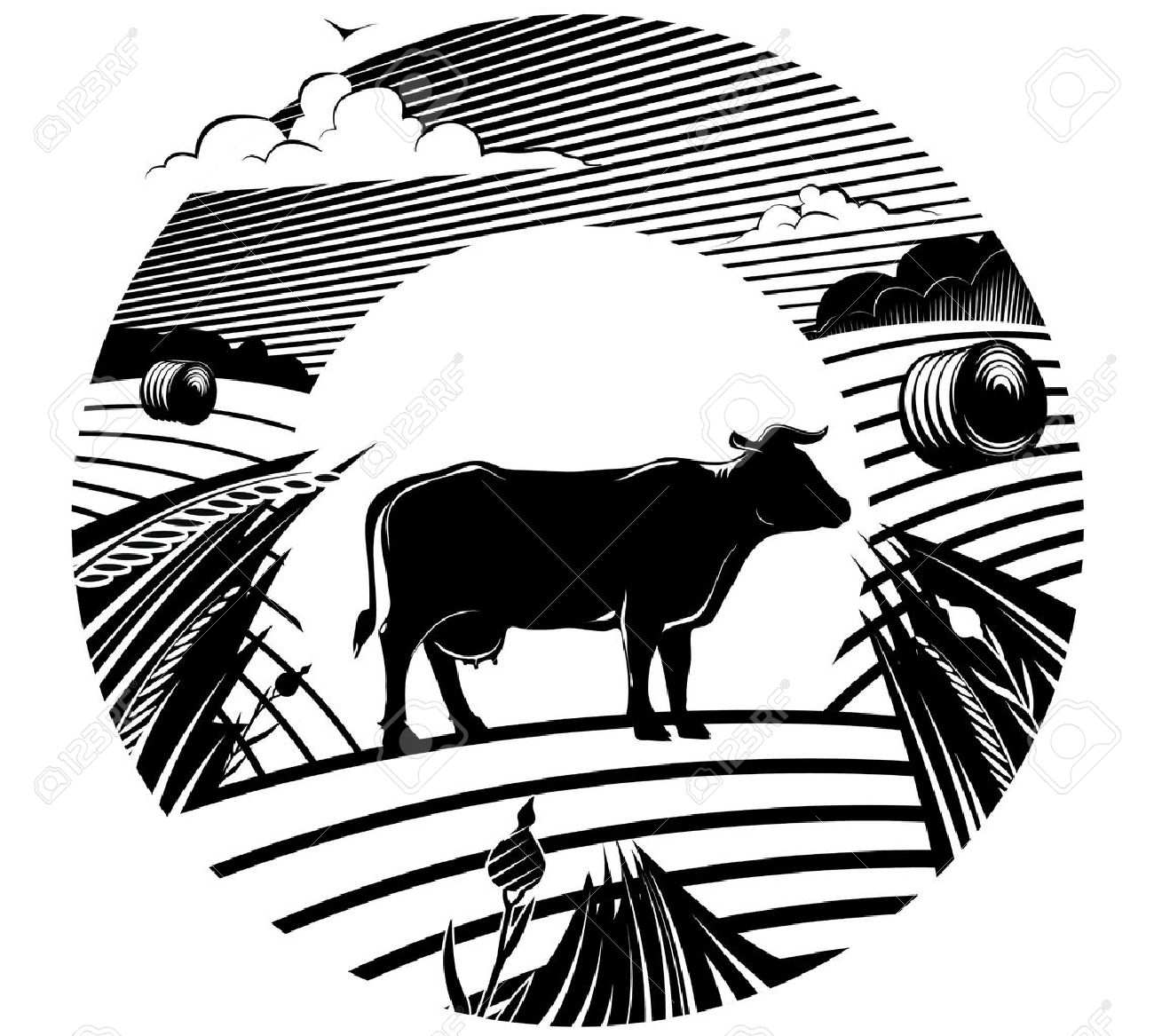 Rural landscape with cow stands on field under cloudy sky. Vector illustration in the engraving manner. Picture can be used for design labels. Stock Vector - 17246506