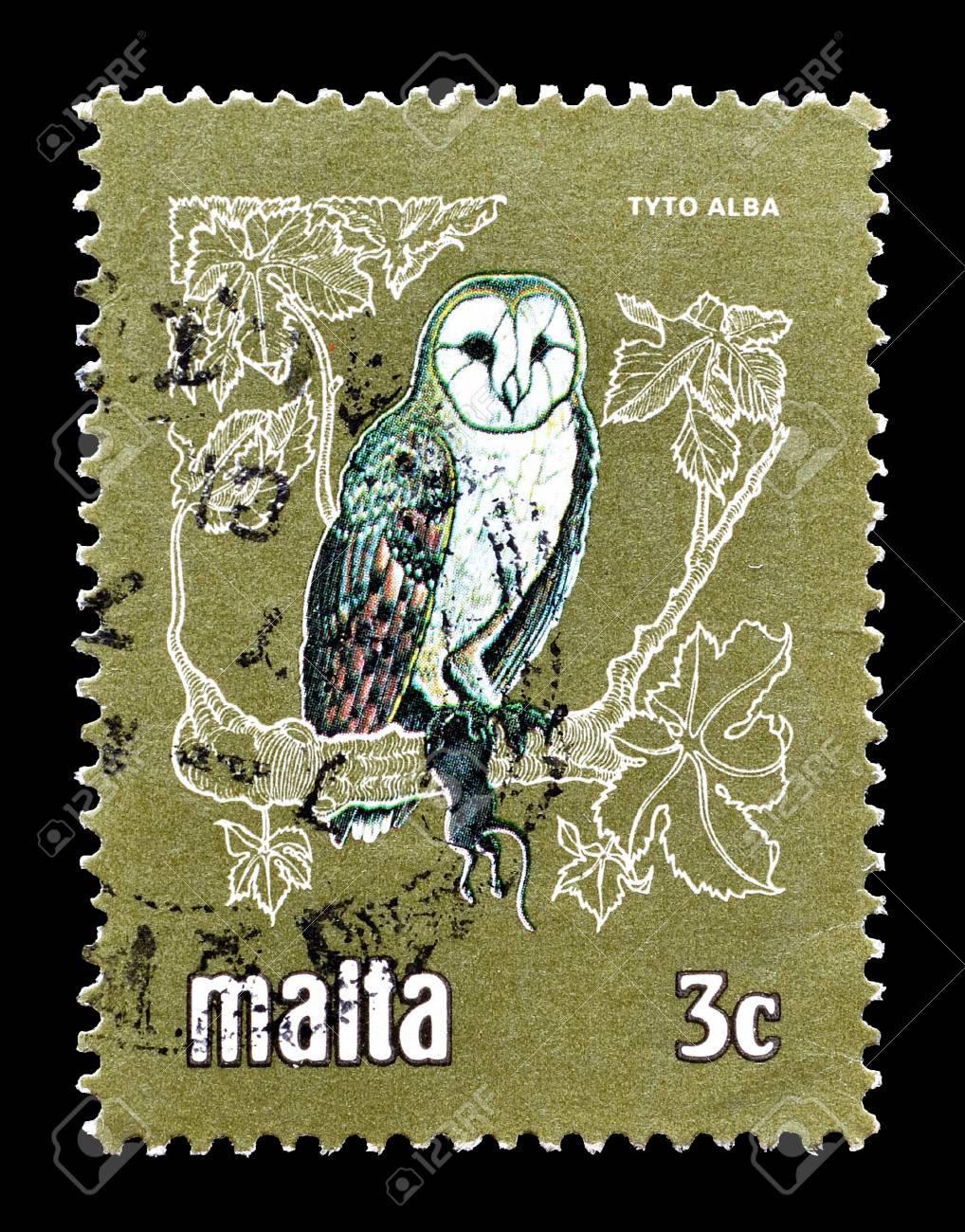 Cancelled Postage Stamp Printed By Malta That Shows Barn Owl Circa 1981 Stock
