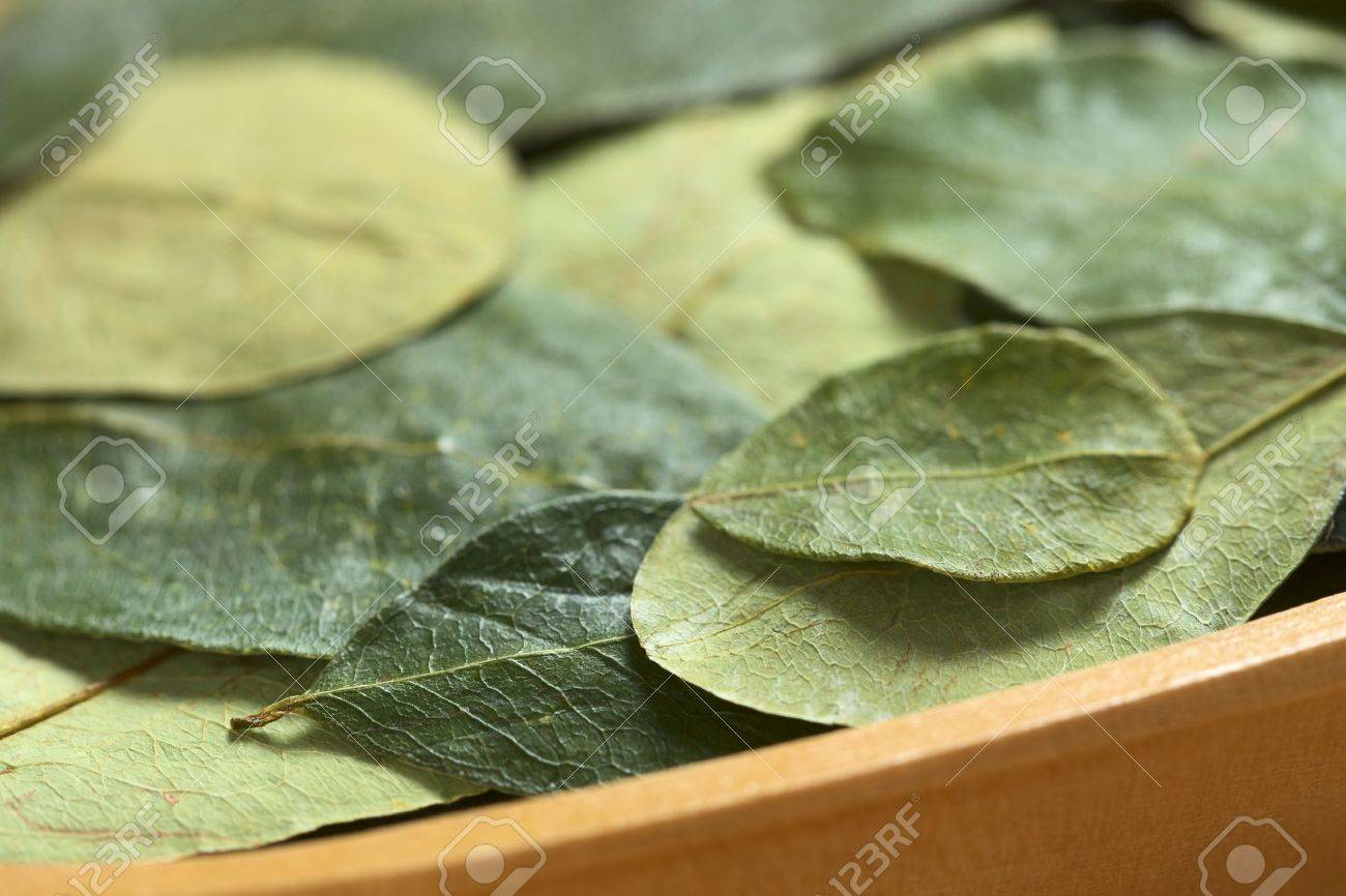 Dried coca (lat. Erythroxylum coca) leaves in a wooden bowl. In Peru coca leaves are drunk as tea and they are traditionally chewed in the mountains to help against altitude sickness (Selective Focus, Focus on the front edge of the small leaf on the right Stock Photo - 10201844