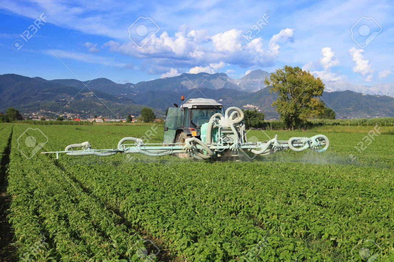agriculture, tractor with chemical treatment spraying pesticide on cultivated field Stock Photo - 10232102