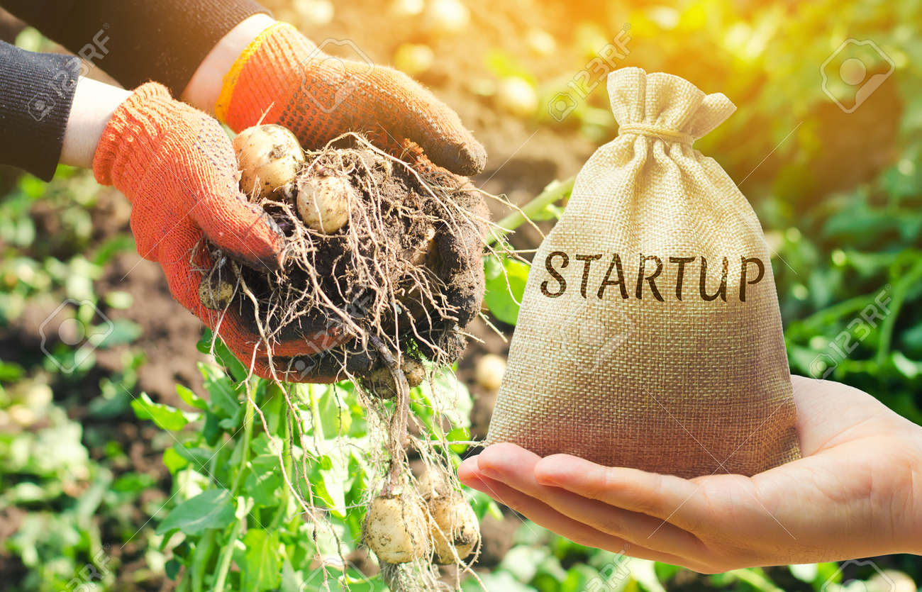 Agriculture startup concept. Increase productivity, efficiency of harvest. Development of innovation. Investing in farming. Smart modern technology in the agricultural sector. Environment. Budget - 139590741