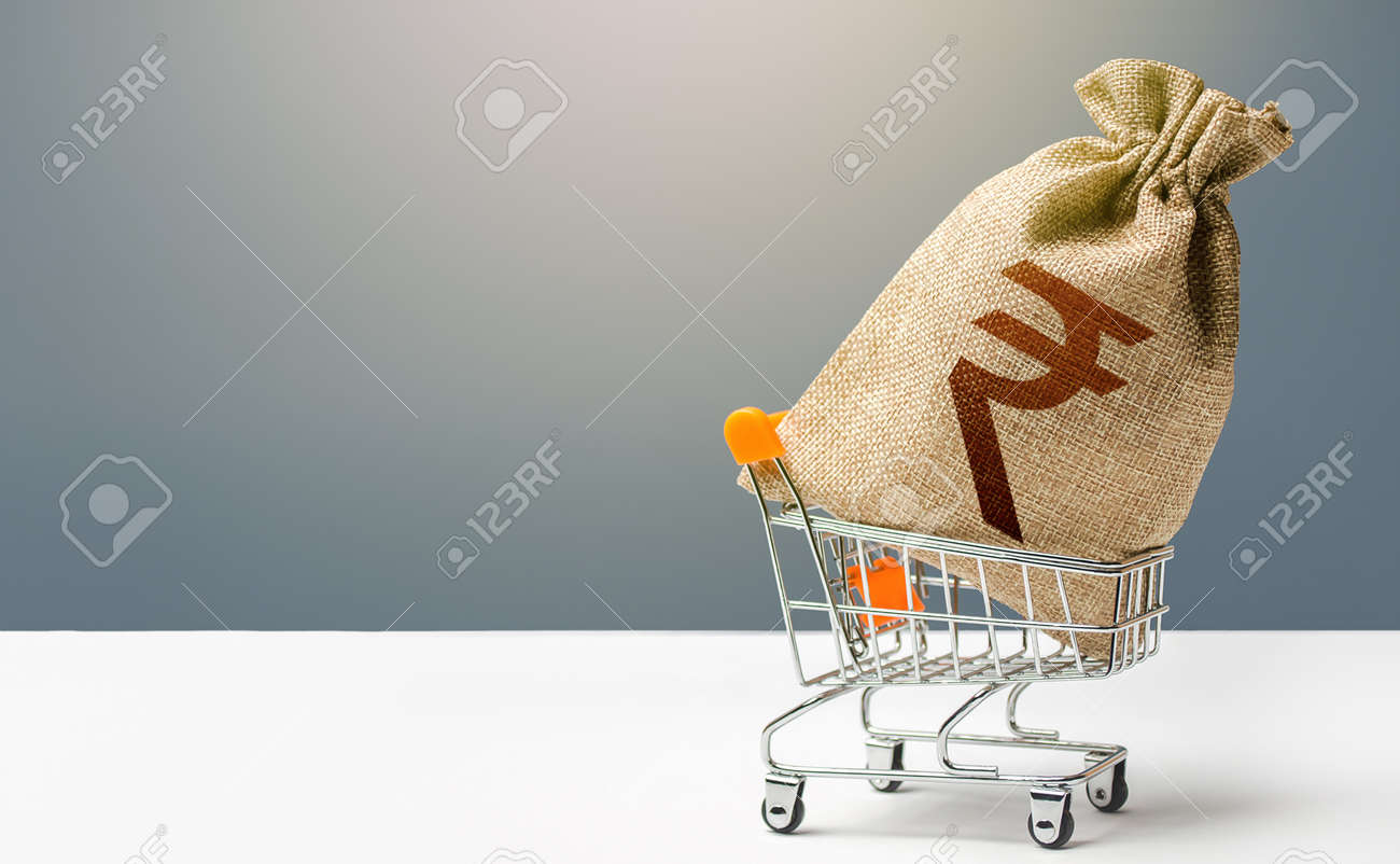 Indian rupee money bag in a shopping cart. Profits and super profits. Minimum living wage. Consumer basket. Business and trade concept. Public budgeting. Economic bubbles. Loans, microloans. - 159000260