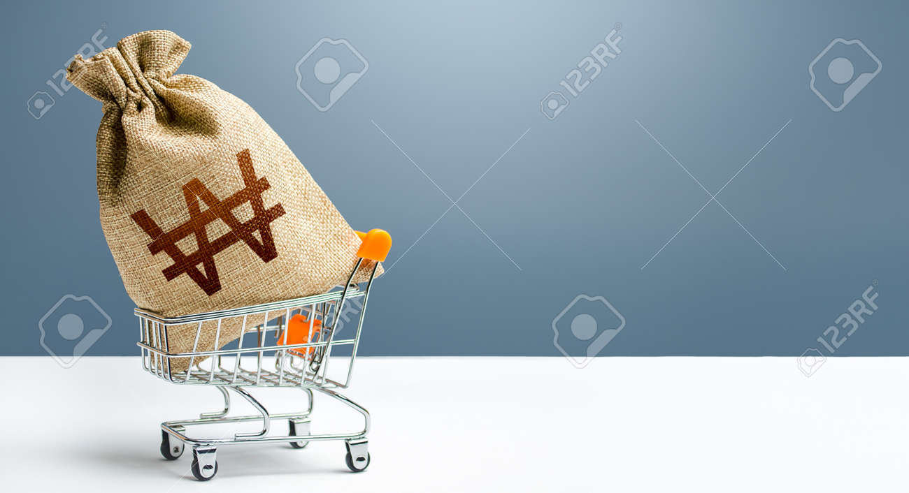 South korean won money bag in a shopping cart. Profits and super profits. Minimum living wage. Public budgeting. Economic bubbles. Loans, microloans. Consumer basket. Business and trade concept. - 160454956