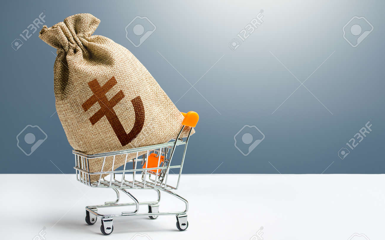 Turkish lira money bag in a shopping cart. Public budgeting. Profits and super profits. Economic bubbles. Business and trade concept. Minimum living wage. Loans, microloans. Consumer basket. - 164515860