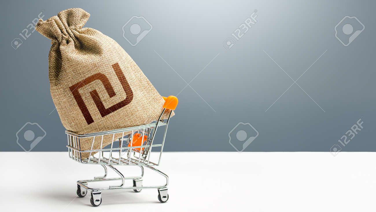Israeli shekel money bag in a shopping cart. Public budgeting. Profits and super profits. Business and trade concept. Minimum living wage. Loans, microloans. Consumer basket. Economic bubbles. - 166029645