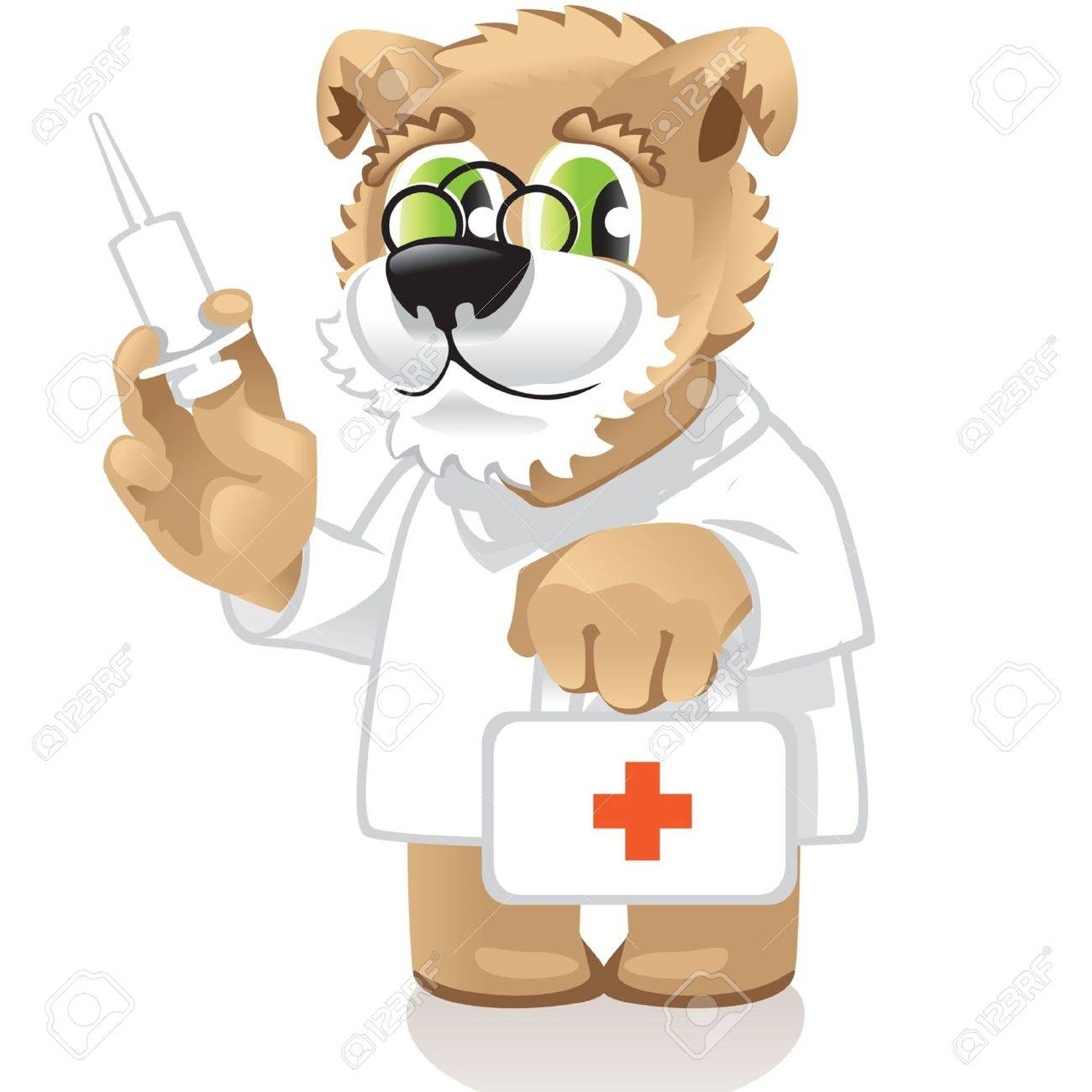 dog doctor - 13782153