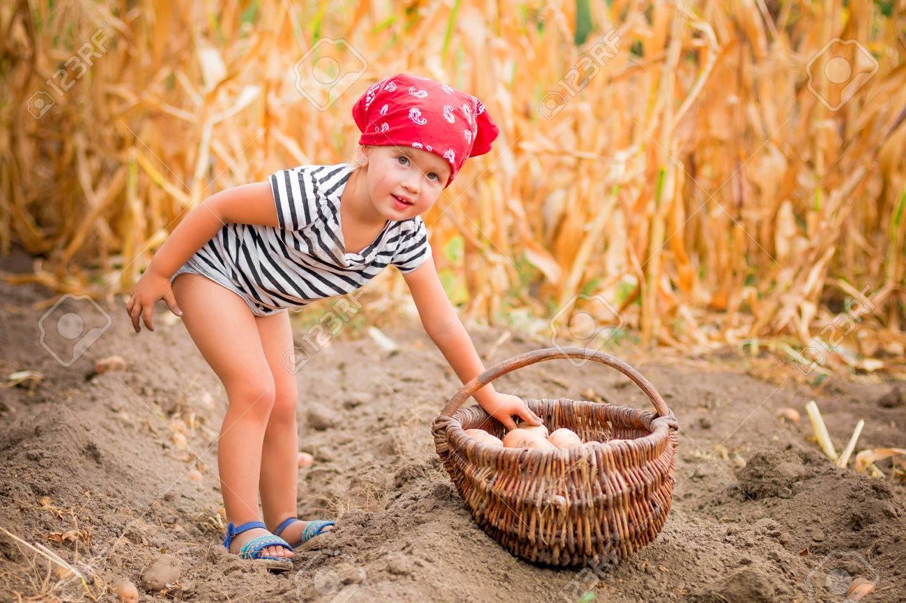 Harvest Baby Bandana