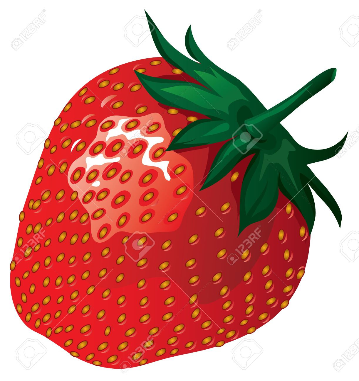 strawberry illustration royalty free cliparts vectors and stock illustration image 10609653 strawberry illustration
