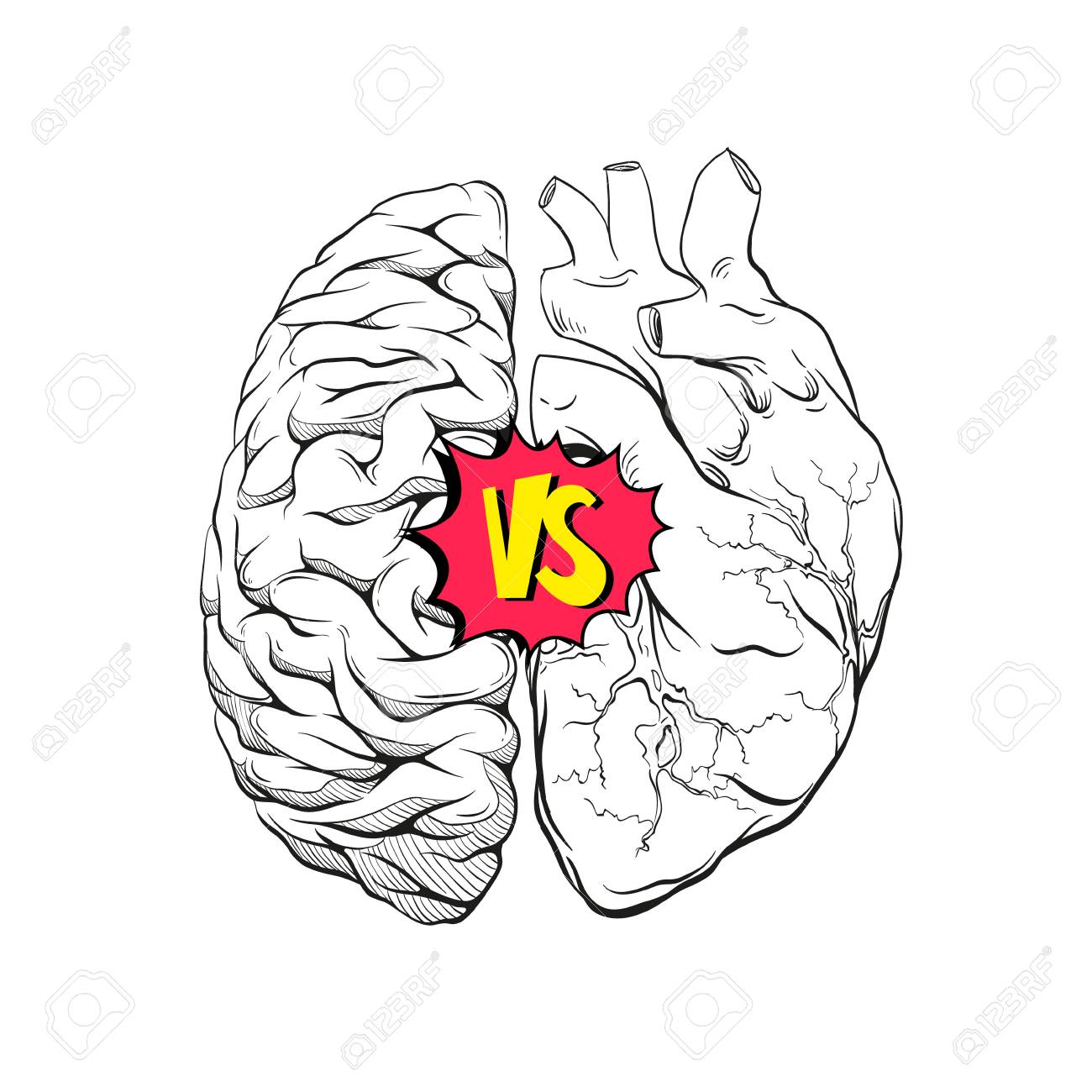 Versus Letters Human Brain Right And Left Hemisphere And Heart