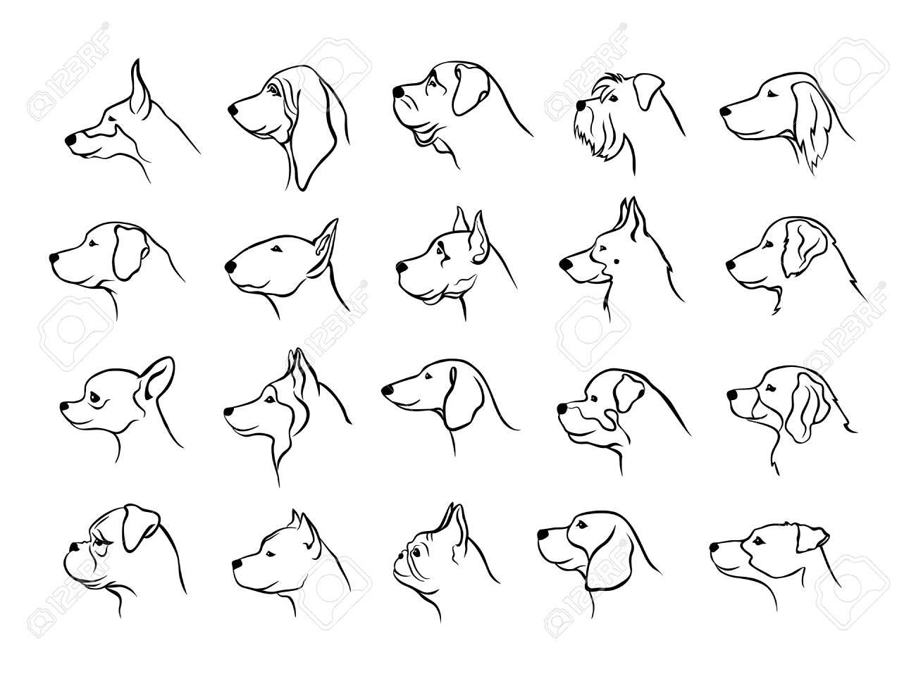 profiles of dogs