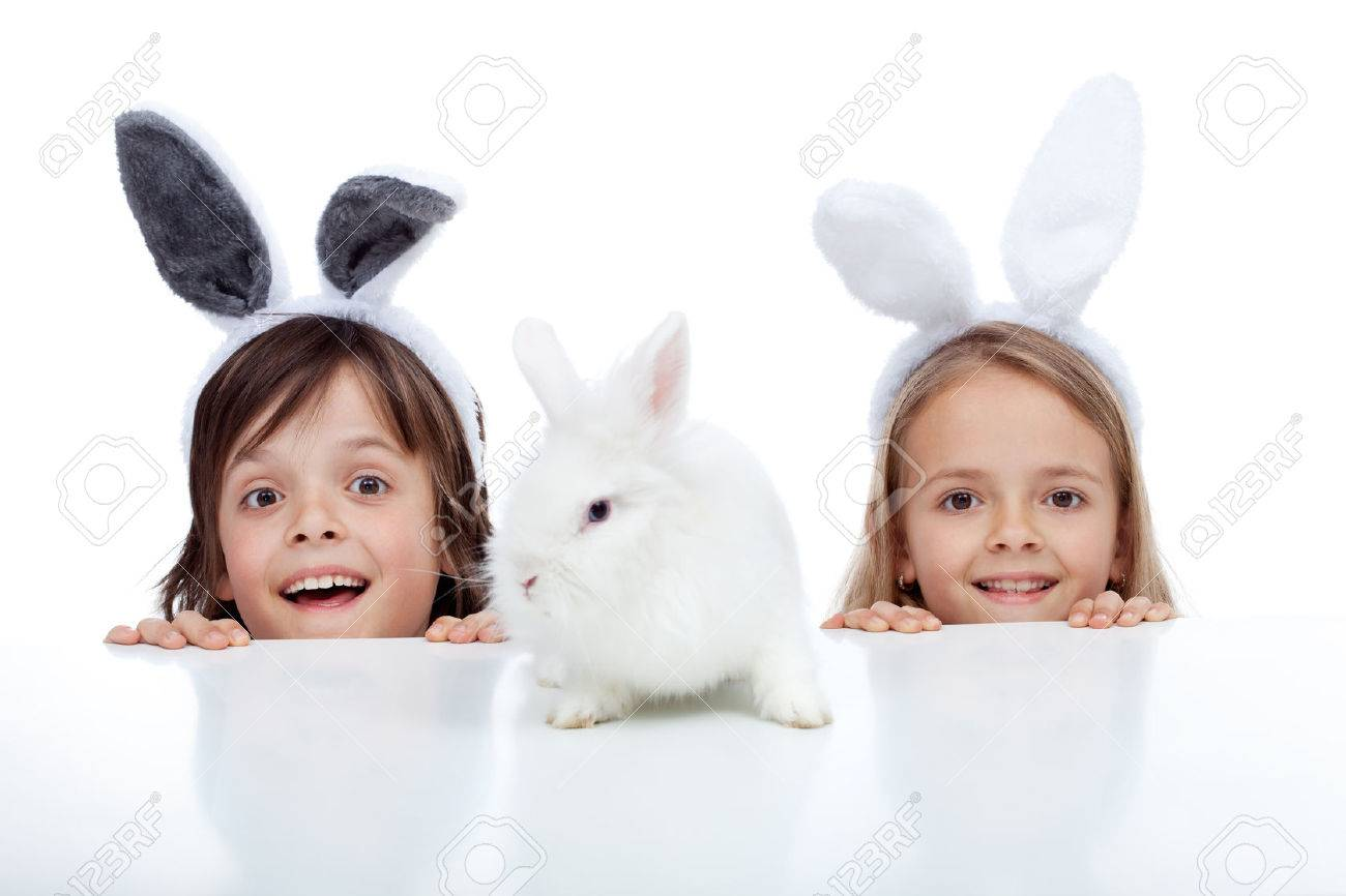 Kids looking at their white rabbit pet - wearing bunny ears, isolated - 37366068