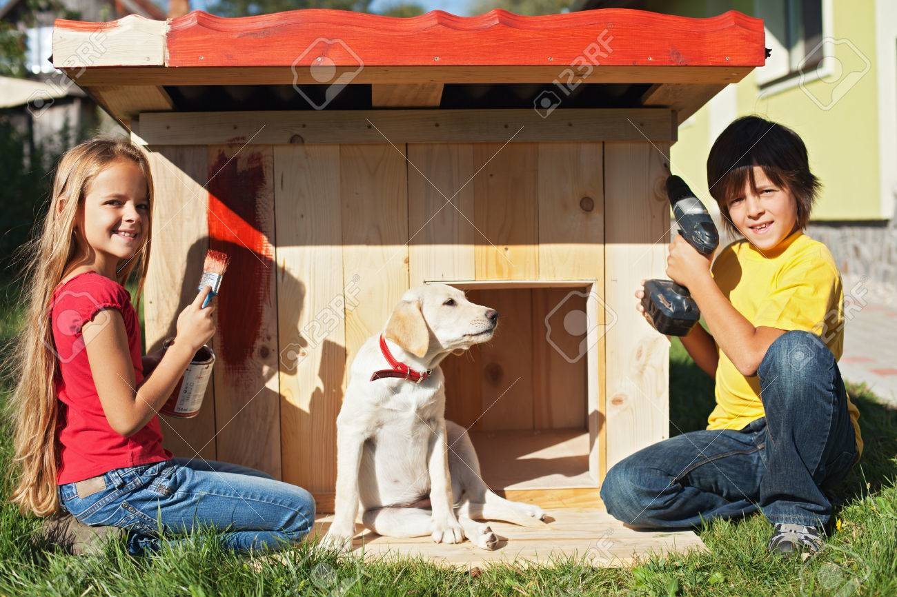 Kids preparing a shelter for their new puppy dog - finishing and painting the doghouse - 45865999