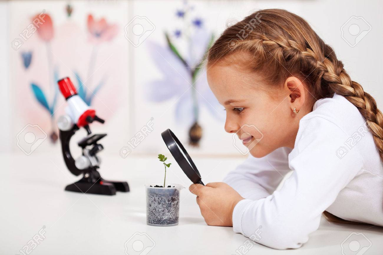Young student studies small plant in elementary science class - 48072195