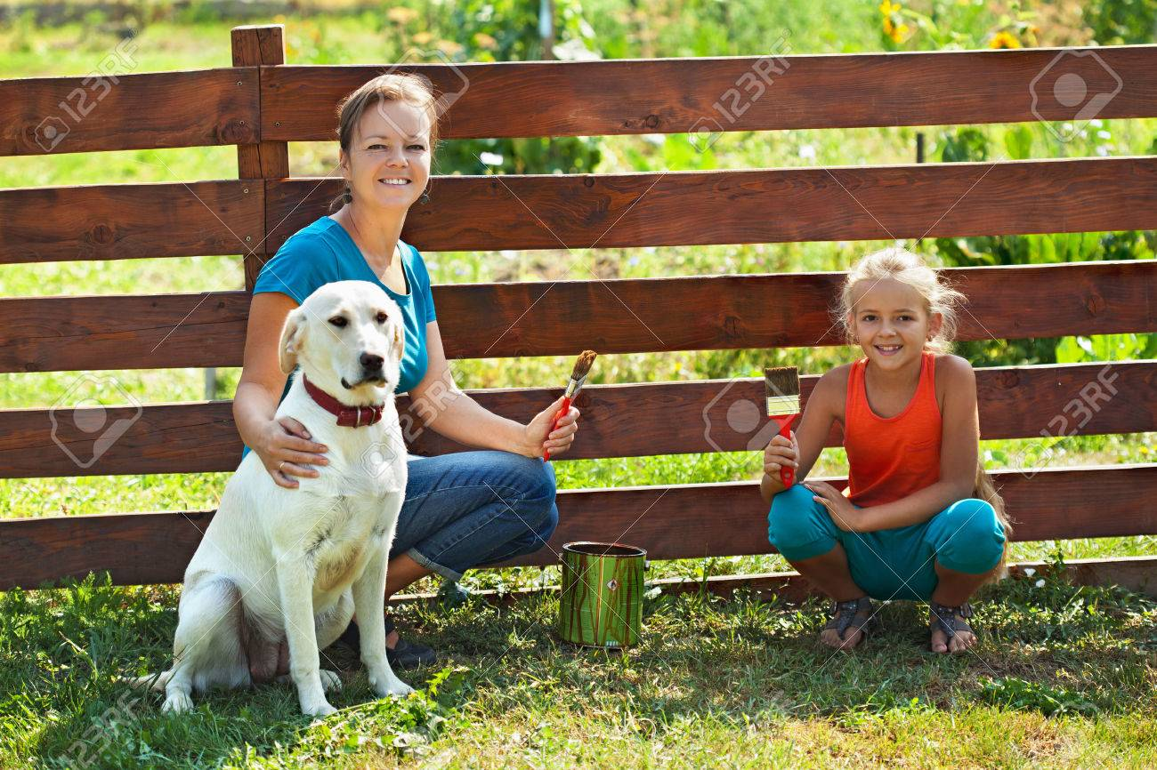 Teamwork - woman with little girl and dog painting a fence in summer time - 54667060