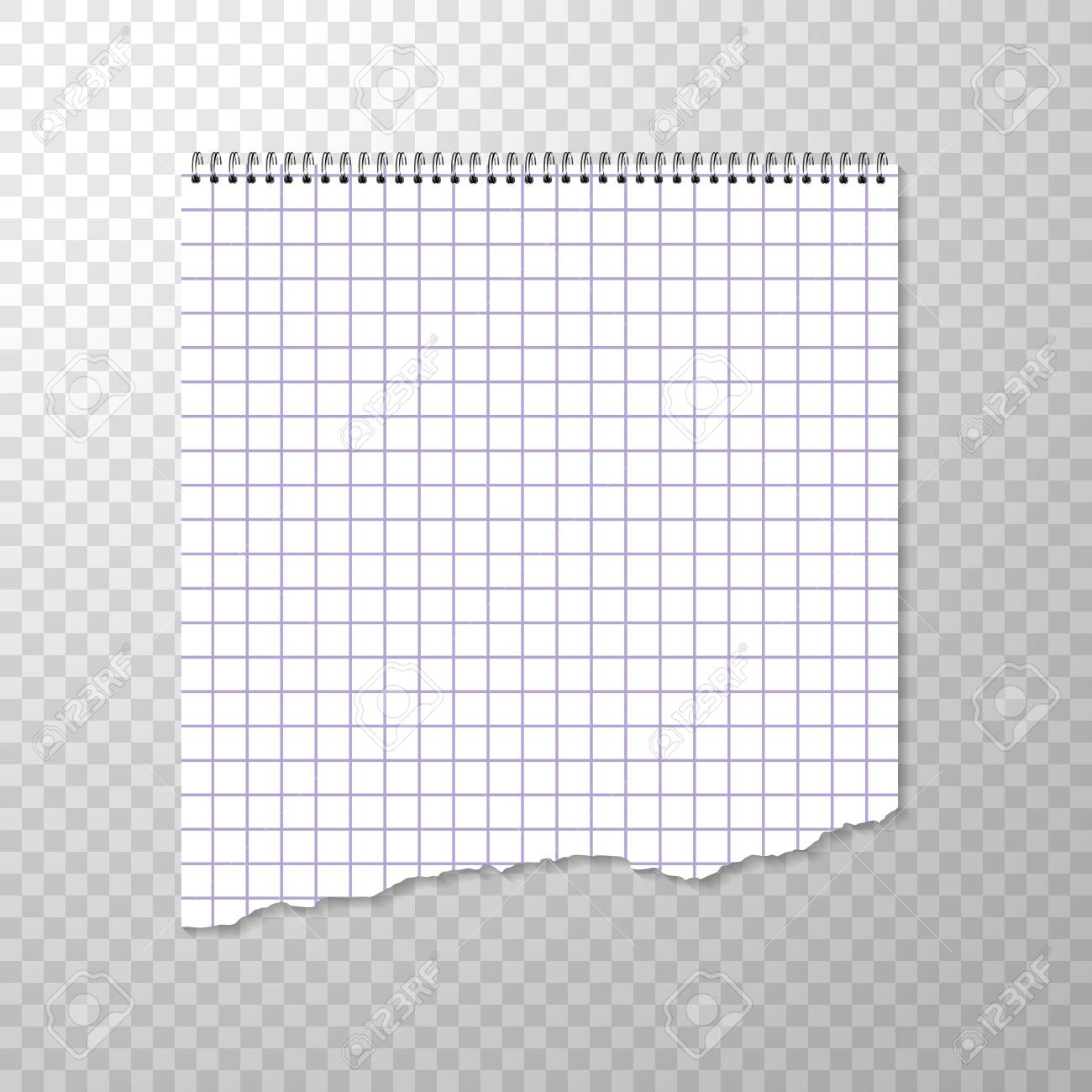 torn piece of squared paper from spiral bound notebook. clean