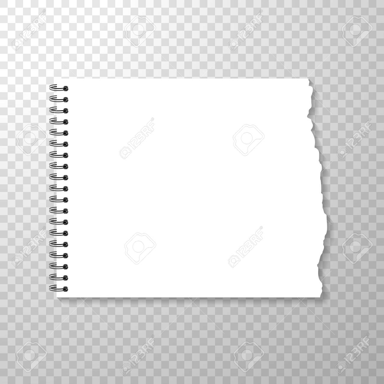 torn piece of horizontal squared paper from spiral bound notebook