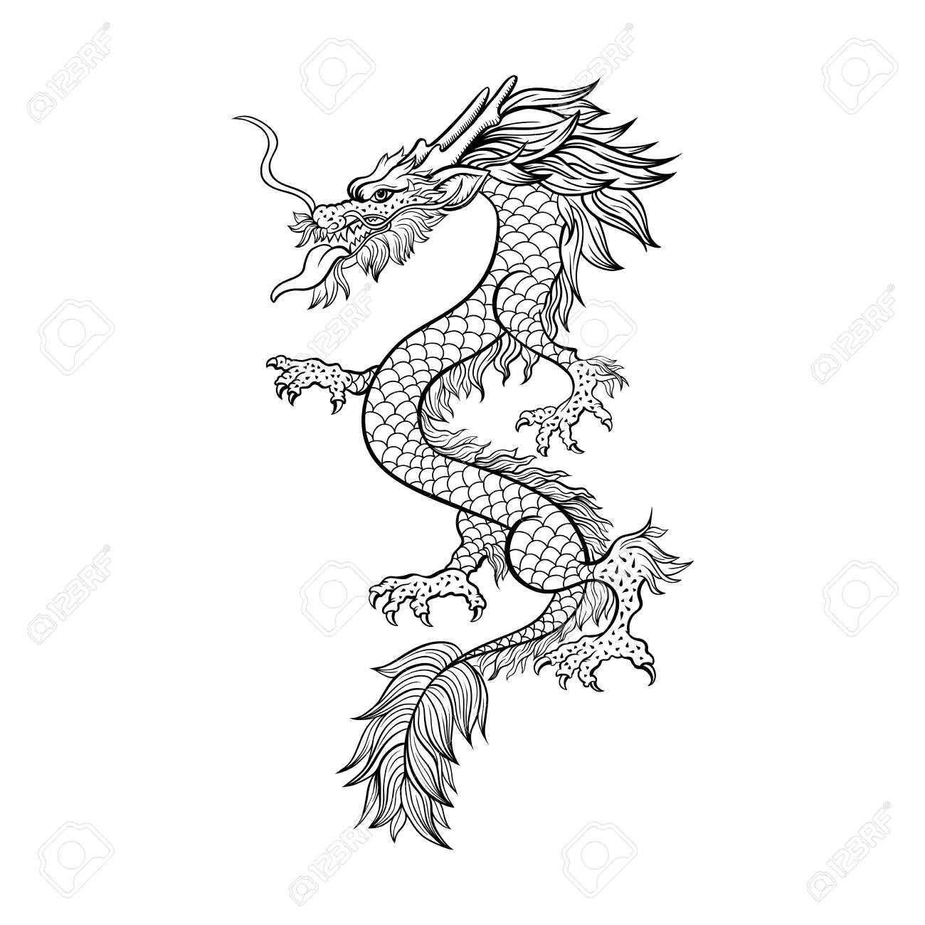 Chinese dragon hand drawn vector illustration mythical creature