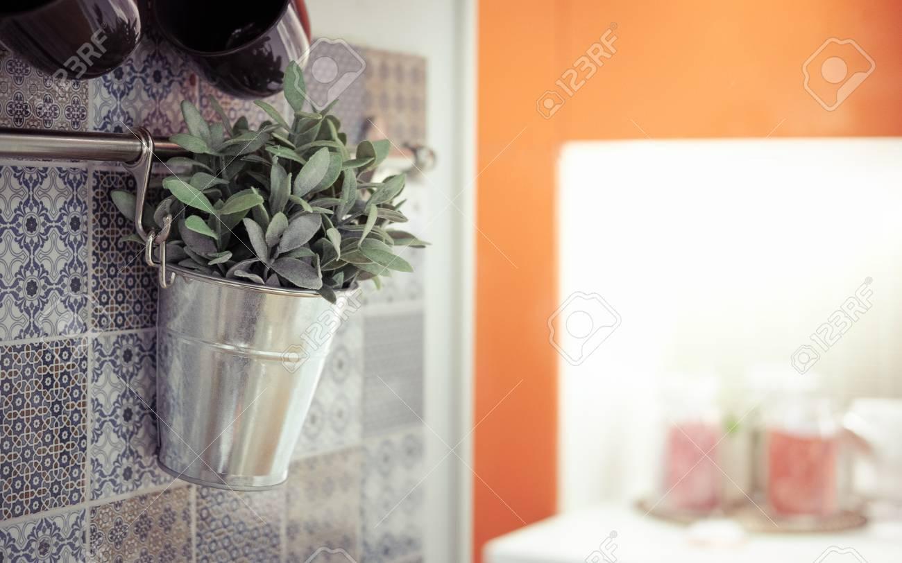 Topfpflanzen Hangende Kuche Klassischer Chromton Lizenzfreie Fotos Bilder Und Stock Fotografie Image 68337672