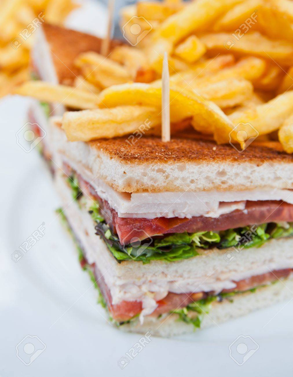 Sandwich with chicken, cheese and golden French fries potatoes Stock Photo - 11178170