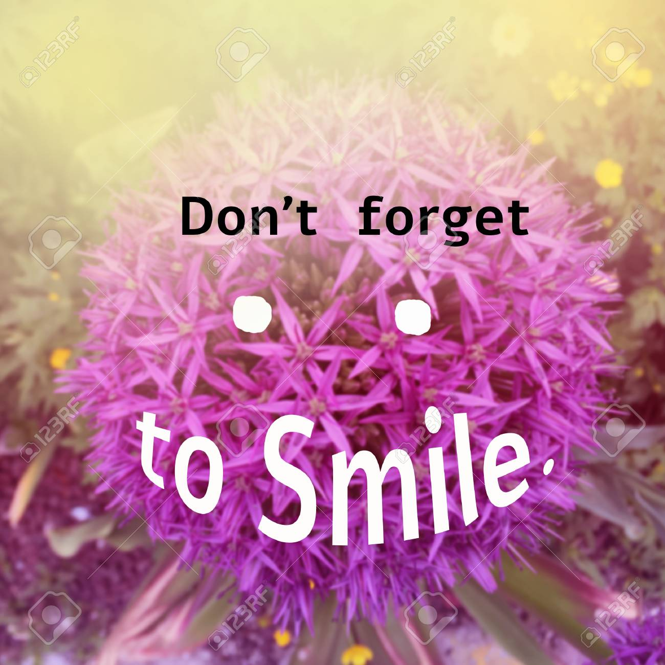 inspirational quote don t forget to smile on blurred flower