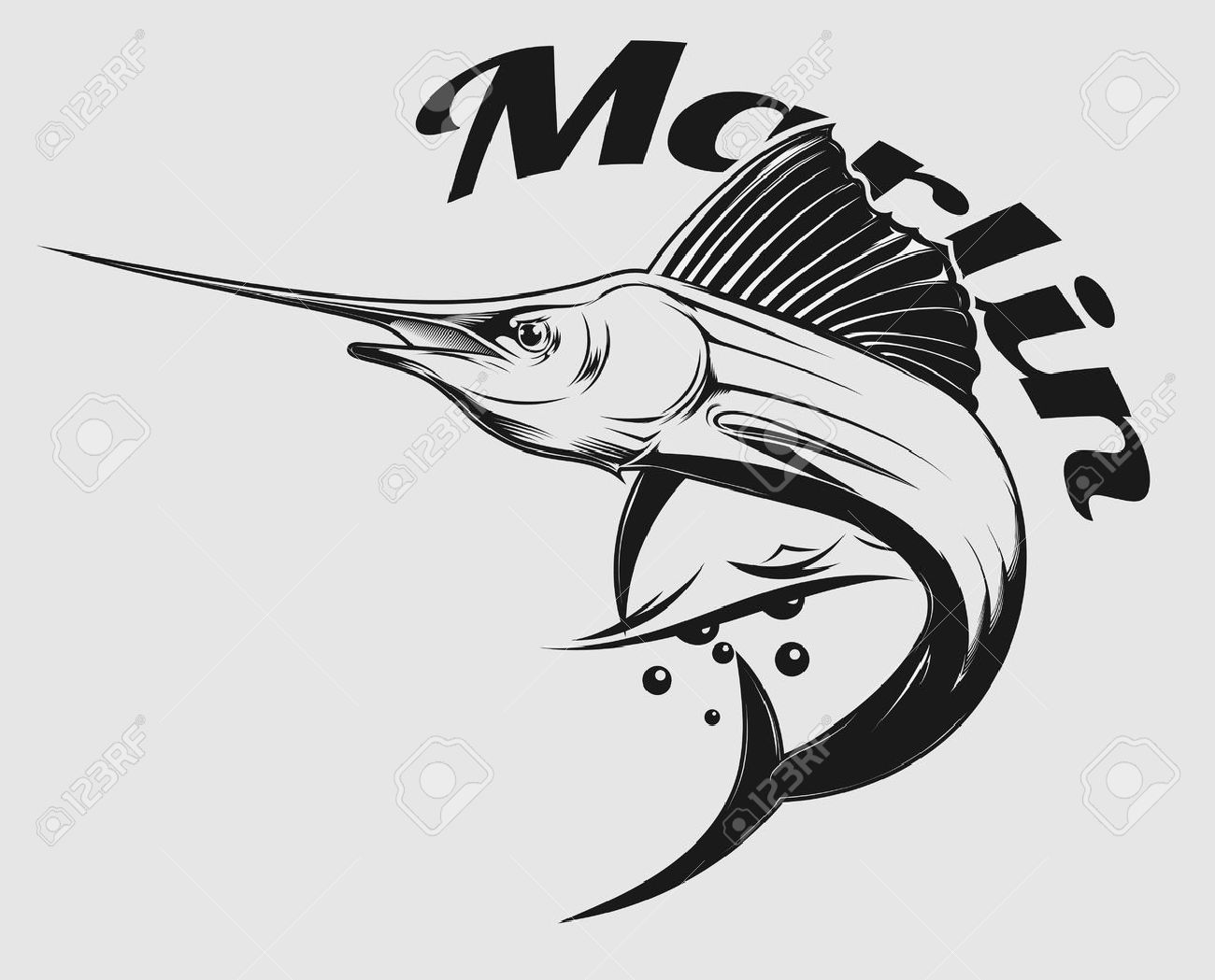 Sailfish Stock Photos. Royalty Free Sailfish Images