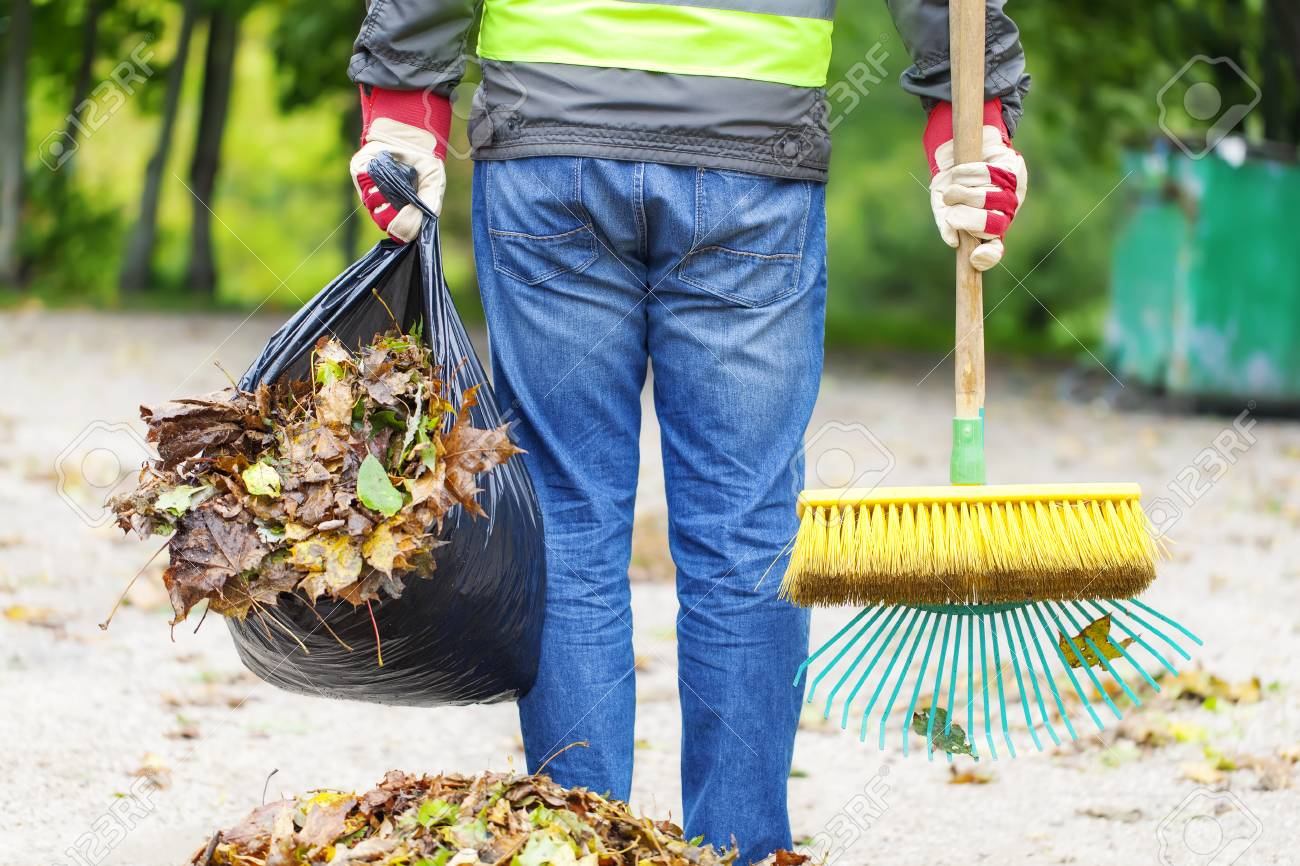 Man with brush and rake collects leaves - 22477982