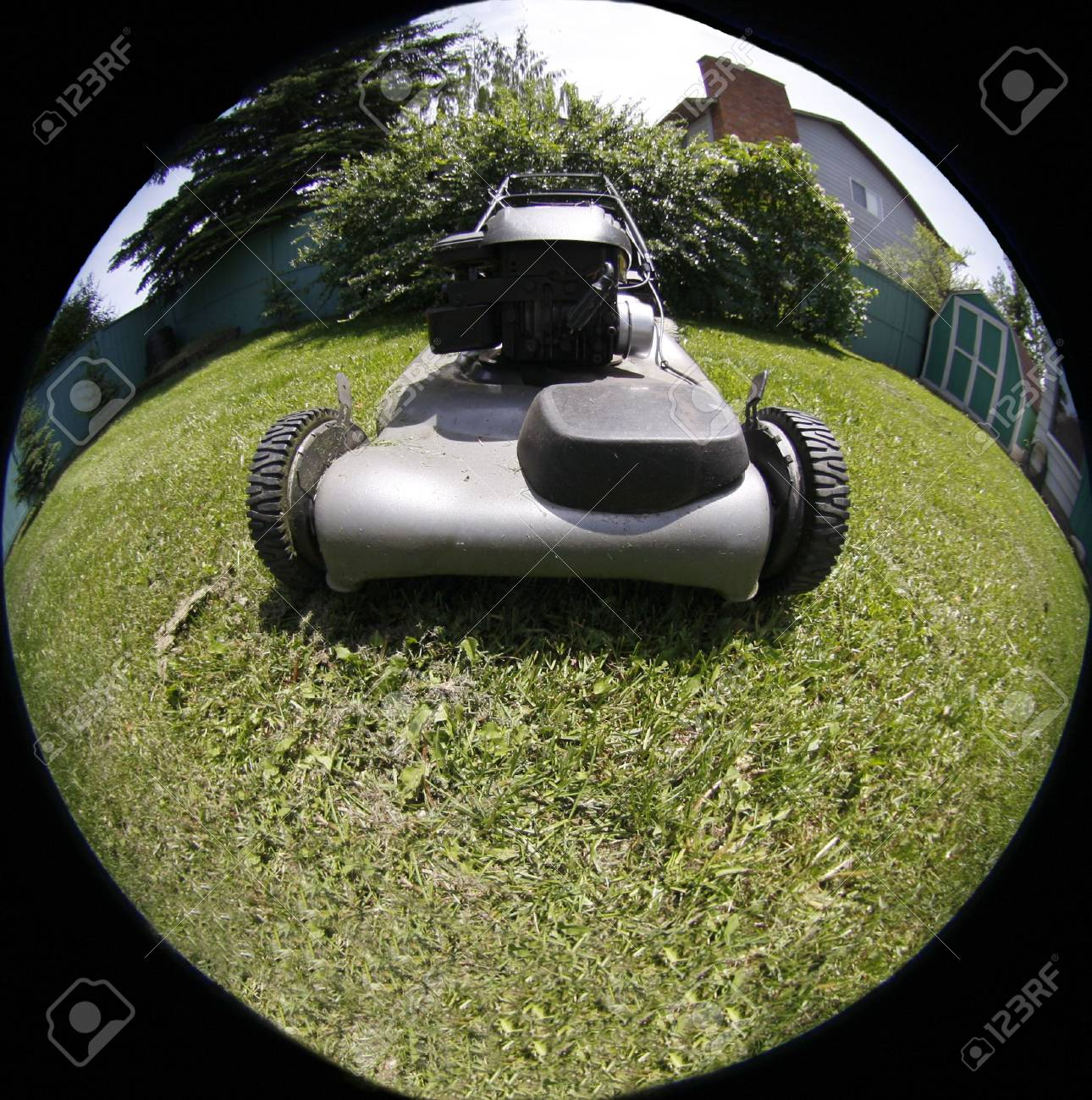 lawn mover Stock Photo - 3680132