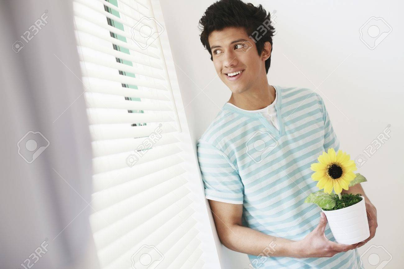 Man holding sunflower in pot, looking out the window Stock Photo - 7834490