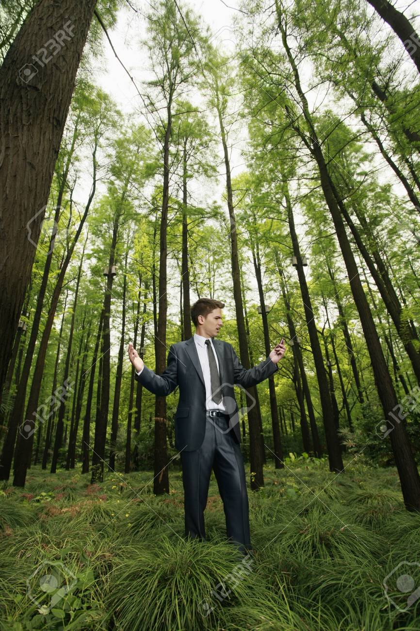 Businessman with mobile phone in the forest Stock Photo - 8149479