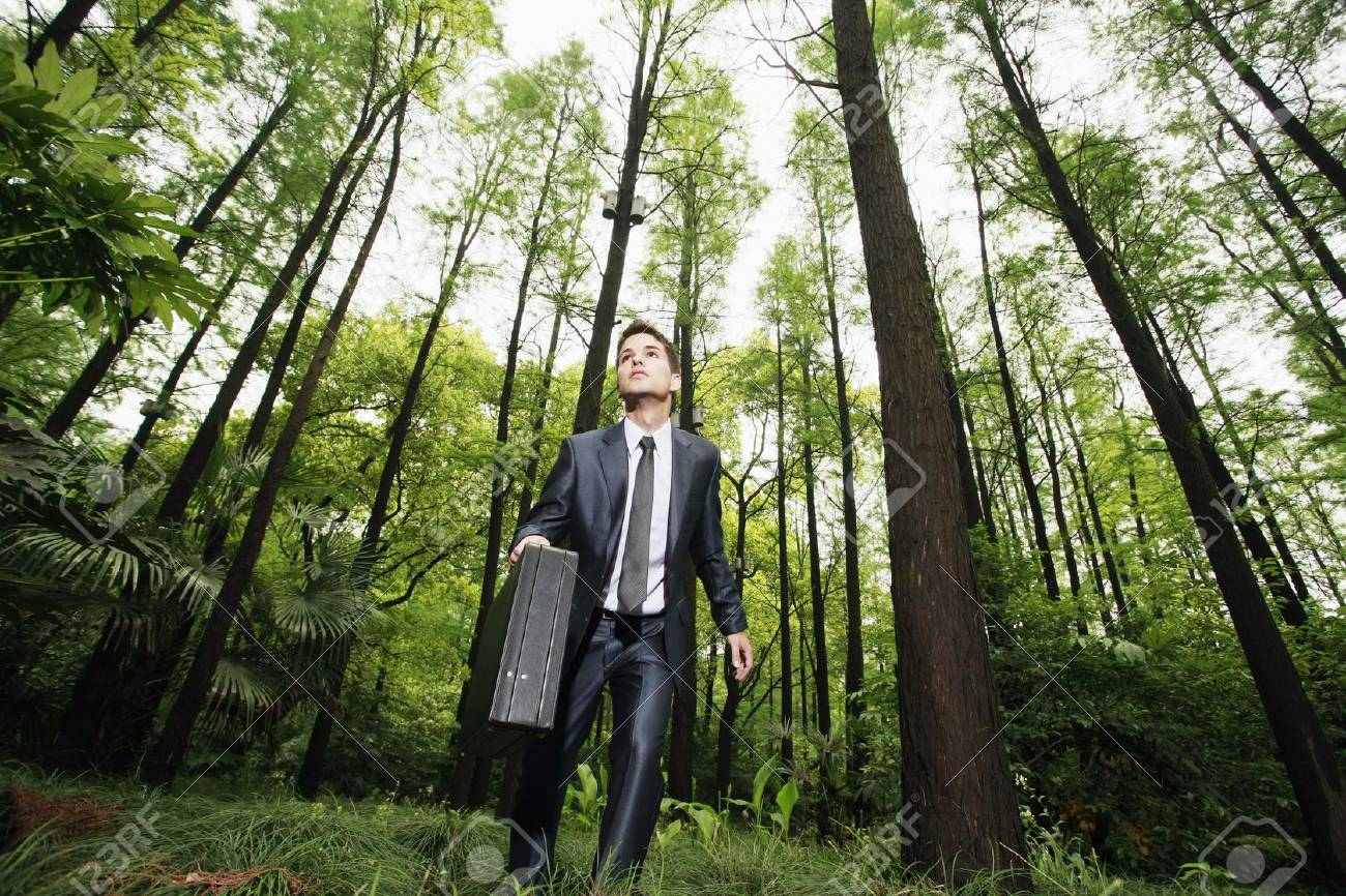 Businessman in the forest Stock Photo - 8149492
