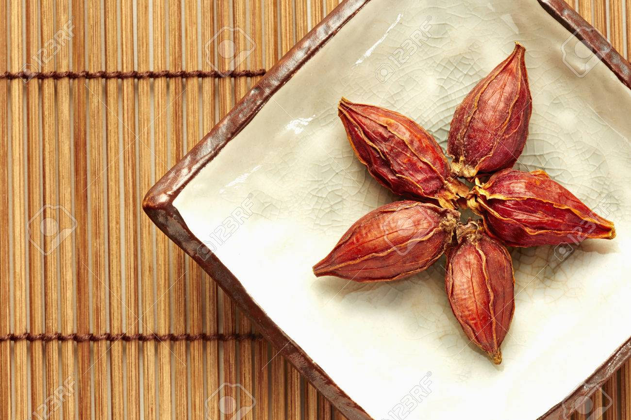 Traditional Chinese herb Cape Jasmine Fruit - 24173763