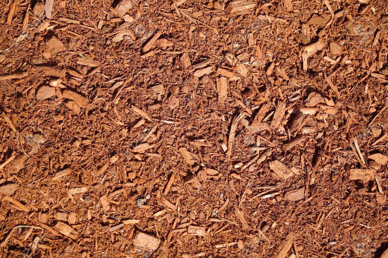 High Angle View Of Mulch Background In Garden Stock Photo, Picture ...