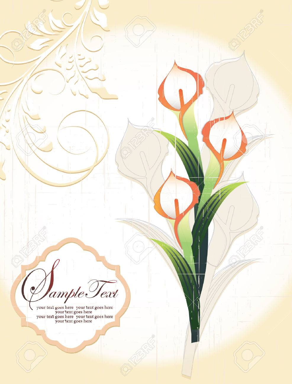 Calla Lily, Vintage Wedding Invitation Card Royalty Free Cliparts ...