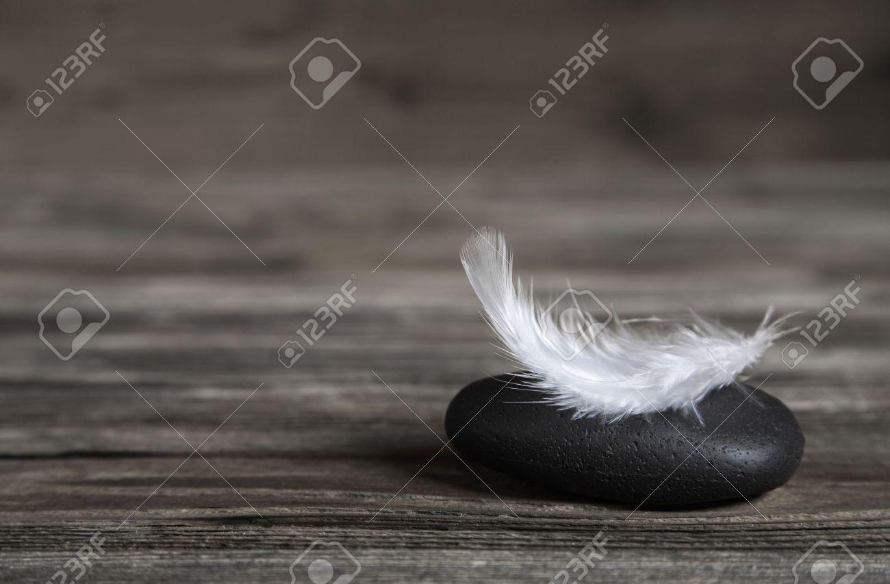 Blanc plume sur une pierre noire: idée pour une carte de condoléances ou de l'équilibre conecpt. Banque d'images - 37649397