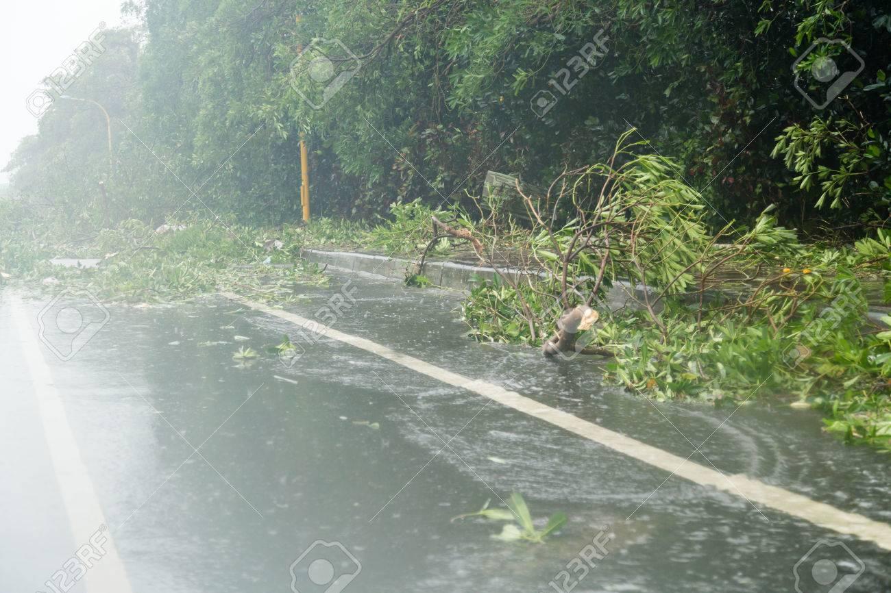 Debri blocking road during a typhoon - 44728743