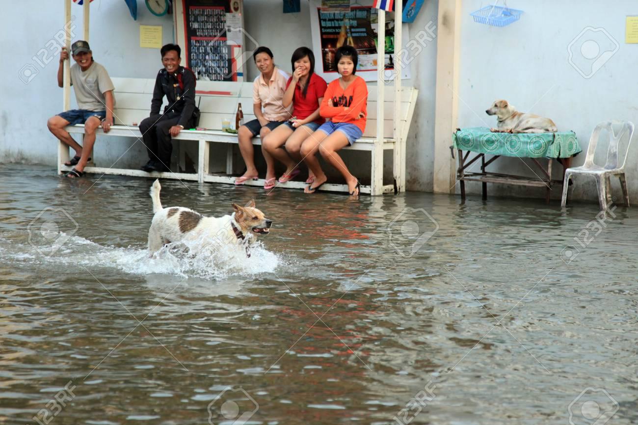 BANGKOK, THAILAND - NOVEMBER 17 : Flooding in Samsen Road after the heaviest rains in 20 years in Thailand on Nov 17, 2011 in Bangkok, Thailand Stock Photo - 11249878